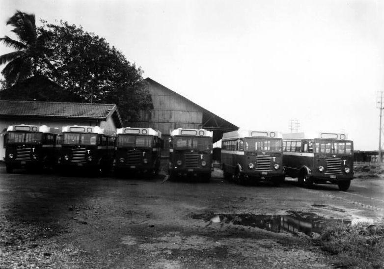 1949 Thornycroft Sturdy14