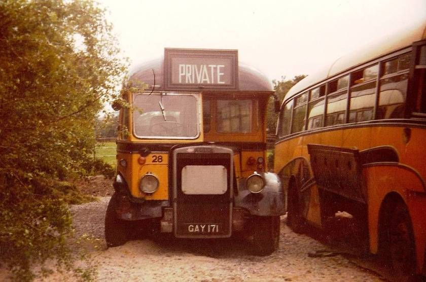 1950 Leyland Tiger PS1 with Willowbrook body