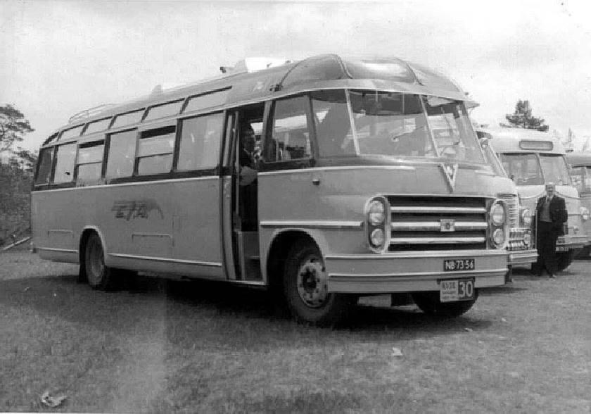 1953 74 NB-73-56 DAF BD-52P BD50-3595 Verheul