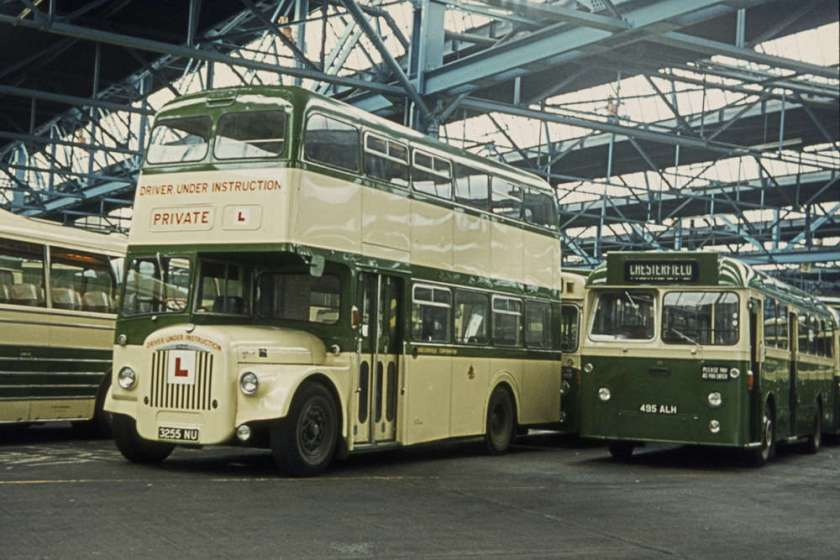 1960 AEC Reliance 2MU2RA with Willowbrook B42D body