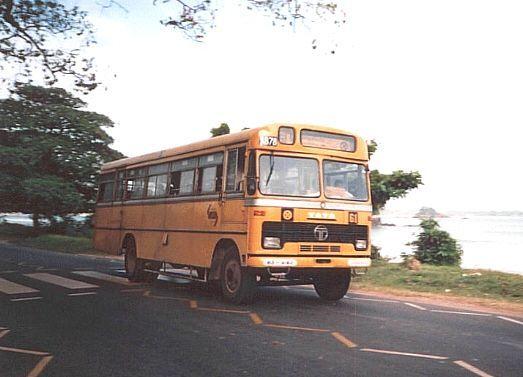 TATA in the CTB yellow livery hurries along the coast near Hambantota Sri lanka yellow
