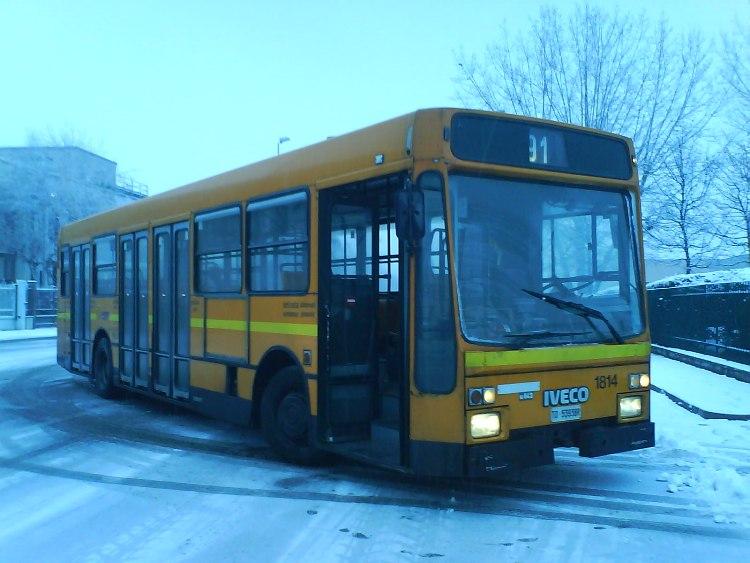 Viberti U842 I