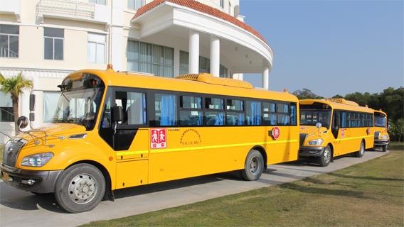 ZIS Buses bus568
