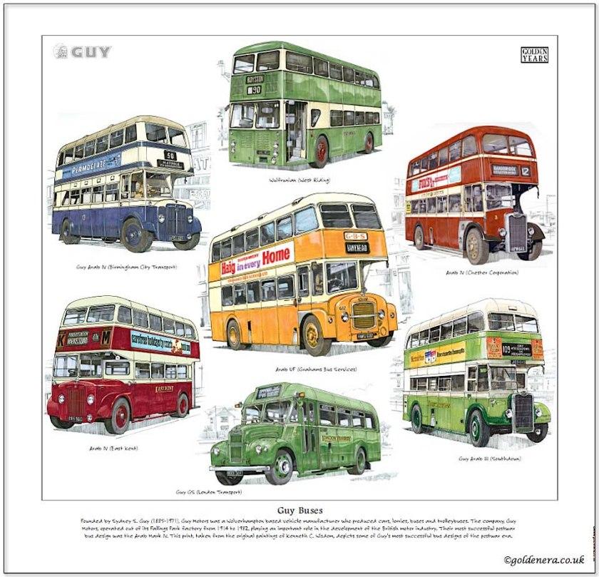 Guy buses