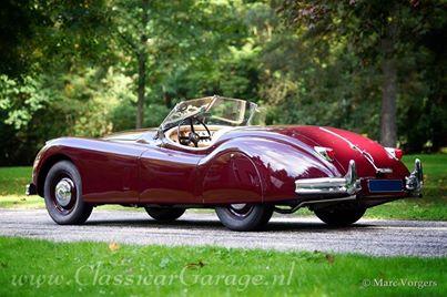 1954 Jaguar Xk 140 Ots