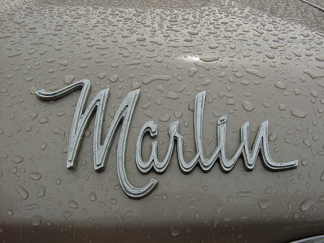 1966 marlin Fastback_wet_hood_nameplate