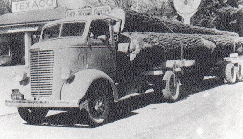 1956 Chevrolet COEdo