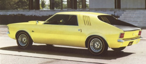 1966 American Motors Vixen