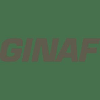 logo-ginaf