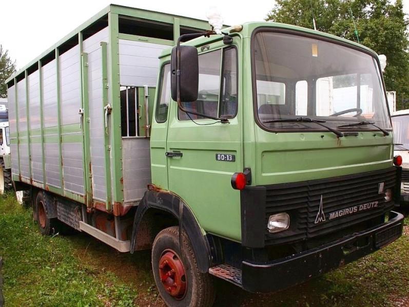 Magirus Deutz Typ 130 M 8 FL Viehtransporter