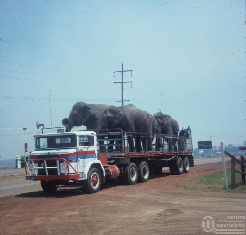 Willeme GM003 Elephanttransport