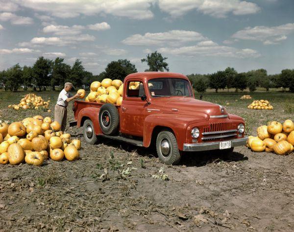 1951 International Harvester Truck with Pumpkins