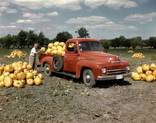 1951 International Harvester Truck with Pumpkins