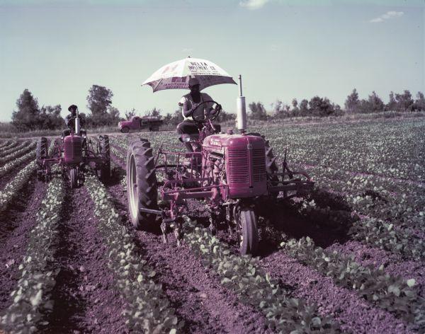 1952 International C-254 Cultivator on Super C Tractor