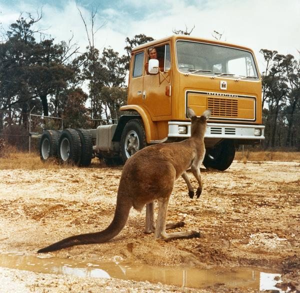 1975 Australian Truck Driver waits for Kangaroo