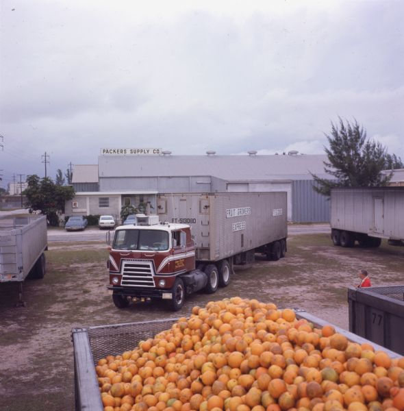 1977 International Harvester Loadstar COE truck at the Packers Supply Company