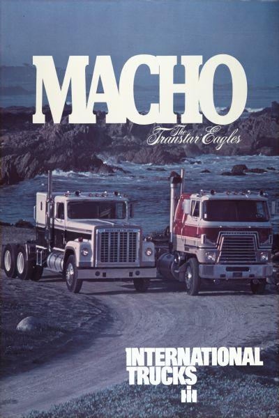 1977 International Transtar Eagle Advertising Poster