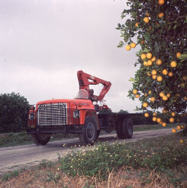 1977 Man Driving Truck with Hi-Lift Equipment
