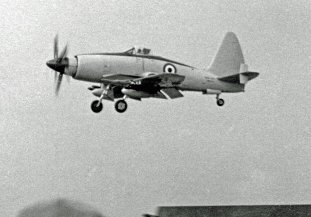 1953-wyvern-tf-2-being-demonstrated-at-the-farnborough%e2%80%85air%e2%80%85show-in-1953-by-a-westland-pilot