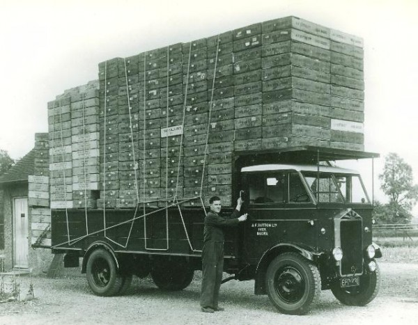 1938-albion-2